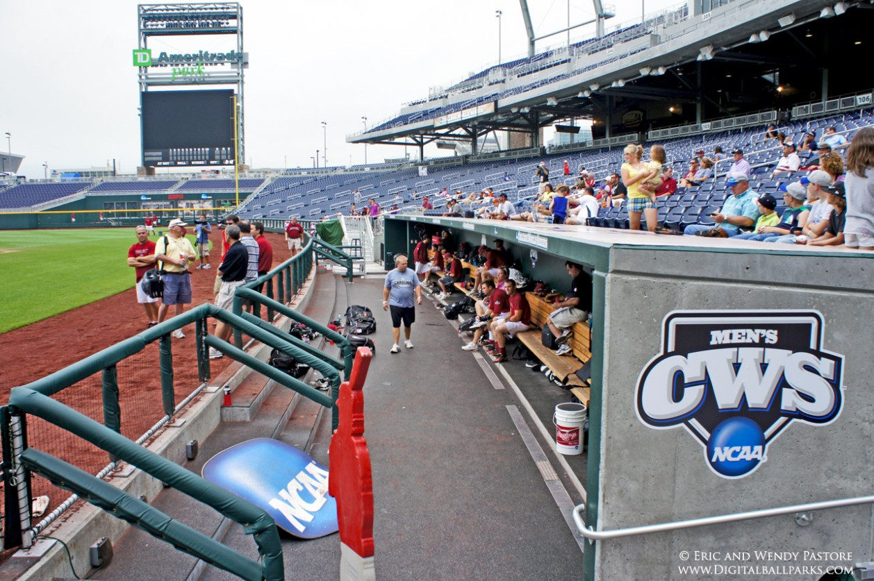 Baseball Dugout Bedroom Designs: Home Of The College